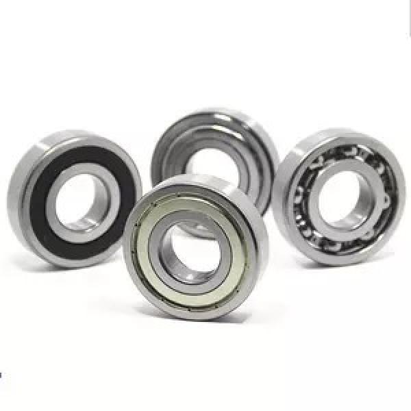 FAG NJ2219-E-M1  Cylindrical Roller Bearings #2 image