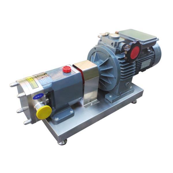 DAIKIN VZ50C44RJBX-10 VZ50 Series Piston Pump #2 image